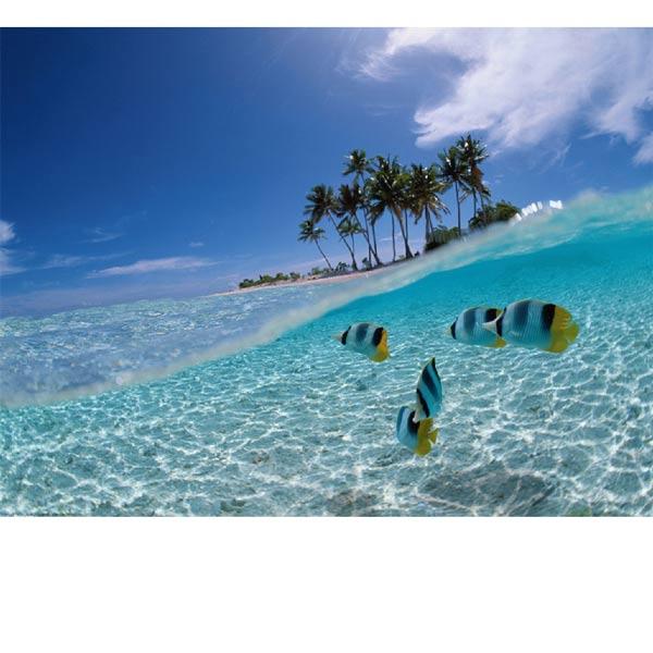 Dominika / Nyaral�helyek - �tlinkes