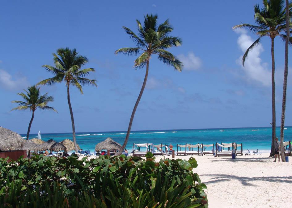 Dominikai K�zt�rsas�g