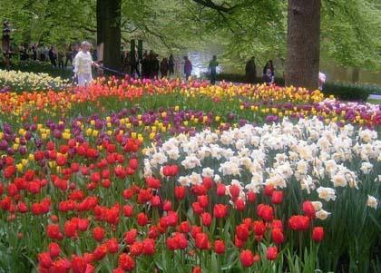 Nagy Benelux k�rutaz�s (tavasz)
