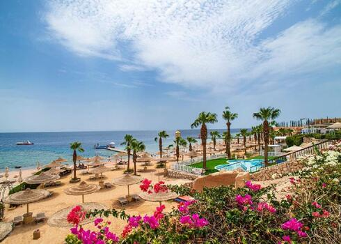 Egyiptom, Sharm el Sheikh: Amphoras Holiday Resort 4*