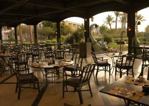 Neftisz program, Sharm El Sheikh: Hotel Baron Palms 5*, all inclusive